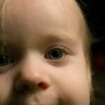 ambrose_closeup