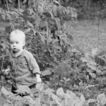 Ambrose in the garden