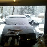 shop_snow